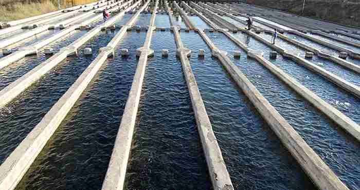 تصویر طرح محل پرورش ماهی