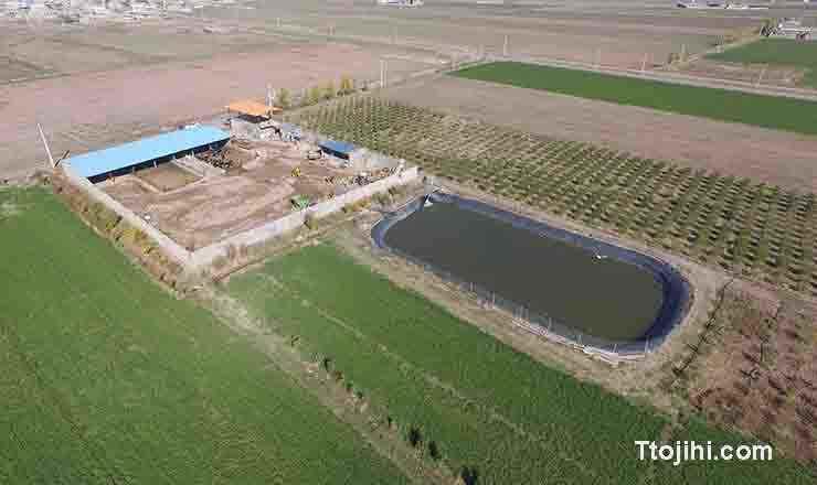 تصویر پرورش ماهی در مخازن ذخیرة آب کشاورزی