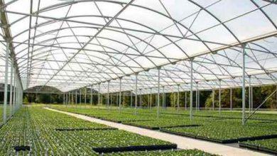 طرح توجیهی تولید سازه های گلخانه ای