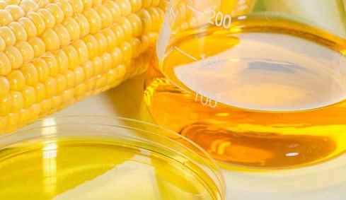 طرح توجیهی تولید شربت ذرت محصولی پر فروش و صادراتی