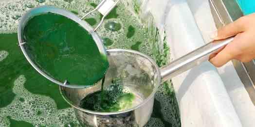 تصویر جداسازی مواد معلق از مایعات با صافی