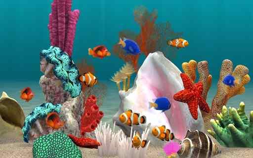 ماهیان آکواریومی در طرح پرورش حیوان خانگی