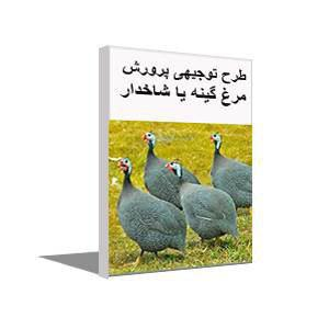 تصویر طرح توجیهی احداث مزرعه پرورش مرغ گینه یا مرغ شاخدار (ویرایش 98)