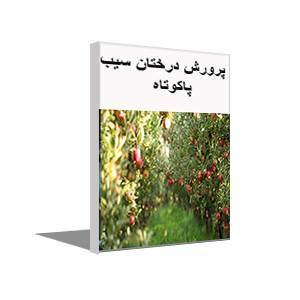 پکیج آموزش رایگان پرورش درخت سیب پاکوتاه