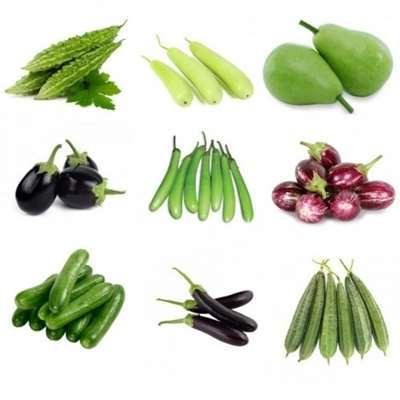 تصویر کاشت سبزی و صیفی جات