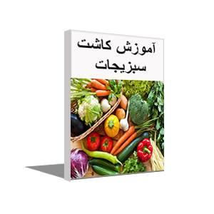 پکیج آموزش کامل کاشت سبزی و صیفی جات