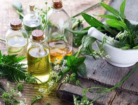 فرآيند توليد شربت های گیاهی