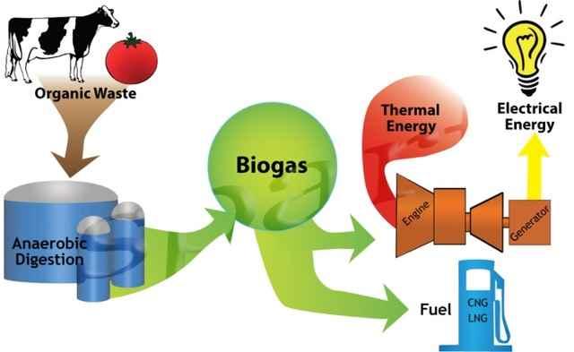 طرح تولید مولد بیوگاز از پسماند غذای خانگی و پسابهای صنایع غذایی