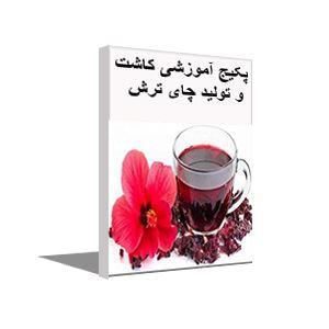 پکیج آموزش کاشت و تولید چای ترش
