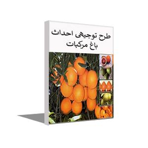 طرح توجیهی احداث باغ مرکبات (خرداد 99) پرتقال،نارنگی و لیموشیرین+آموزش