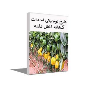 طرح توجیهی احداث گلخانه فلفل دلمه ای (خرداد 99) + آموزش کاشت