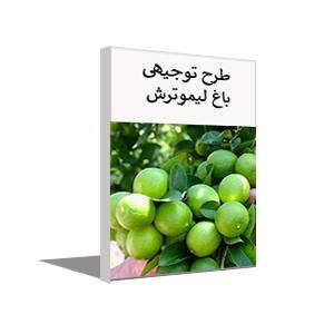 طرح توجیهی احداث باغ لیمو ترش (خرداد 99)