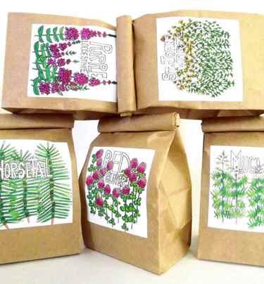 تصویر بسته بندی گیاهان دارویی