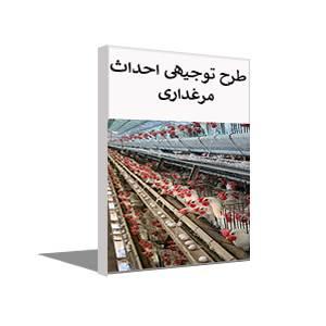 طرح توجیهی پرورش مرغ تخمگذار یا مرغداری (پاییز 99)