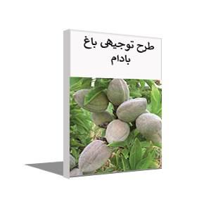 طرح توجيهی احداث باغ بادام (پاییز 99)